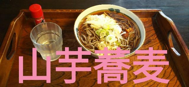 f:id:sakuramaru-japan:20190322015146j:image