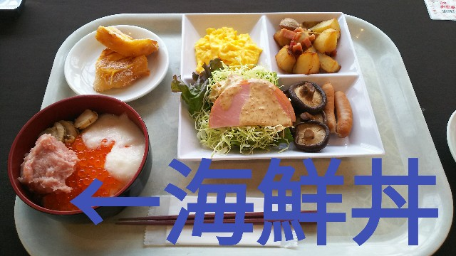 f:id:sakuramaru-japan:20190322193642j:image