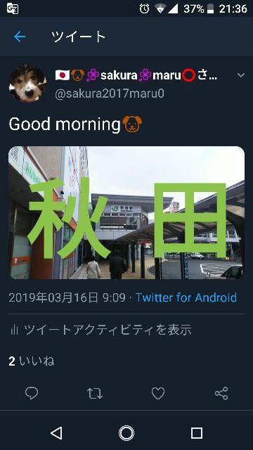 f:id:sakuramaru-japan:20190324214232j:image