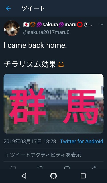 f:id:sakuramaru-japan:20190326213331j:image