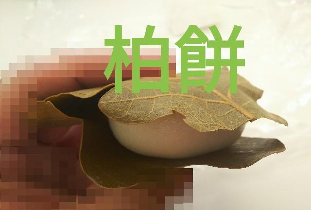 f:id:sakuramaru-japan:20190425175622j:image