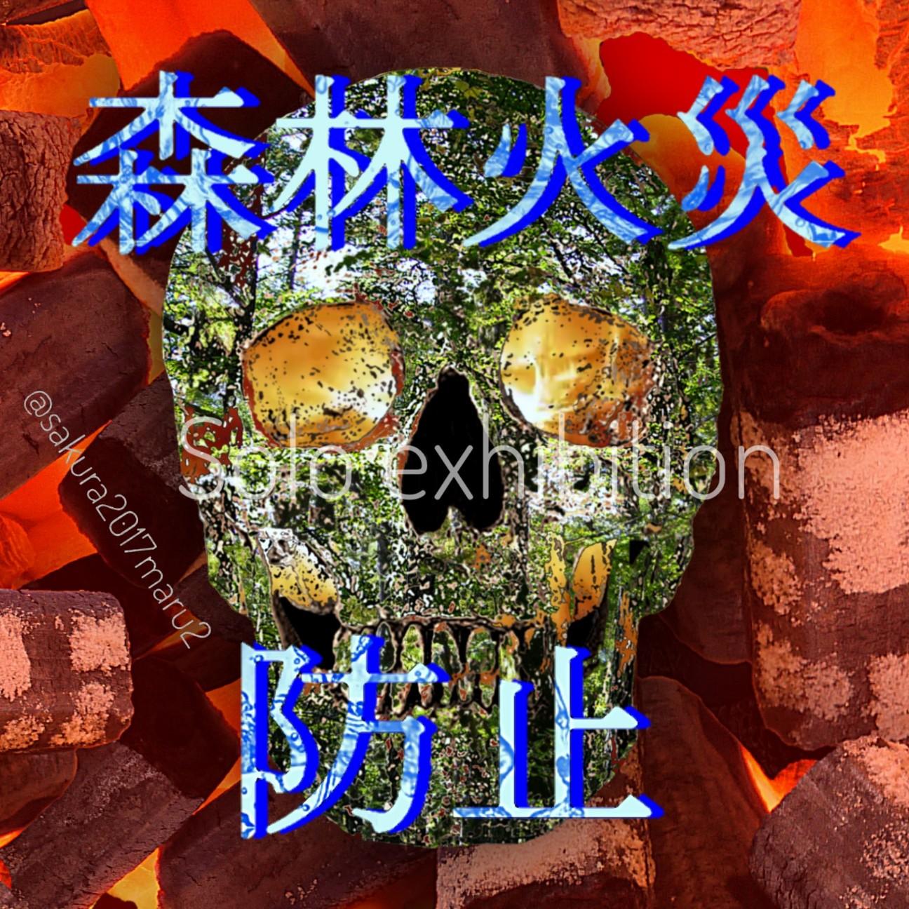 f:id:sakuramaru-japan:20200629201521j:image