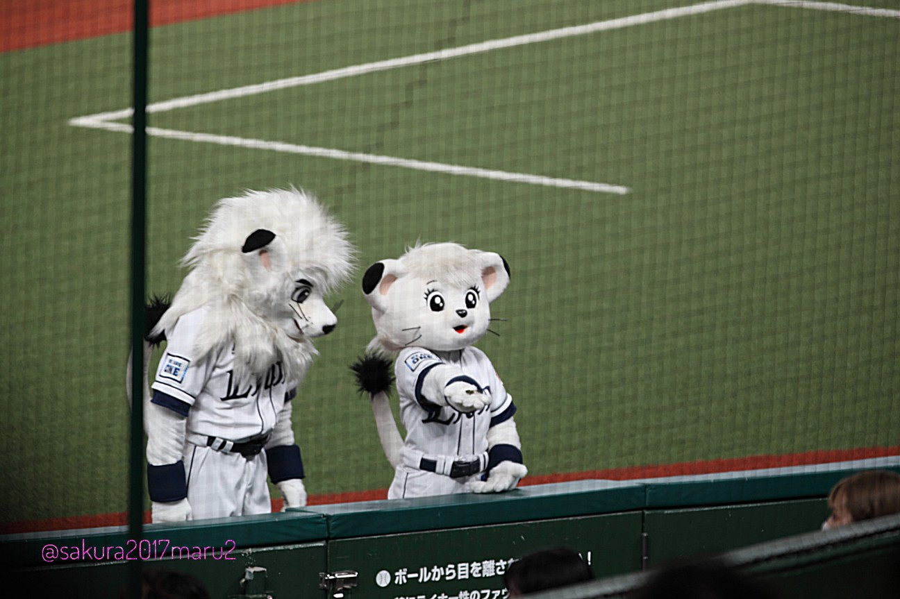 f:id:sakuramaru-japan:20200730155317j:image