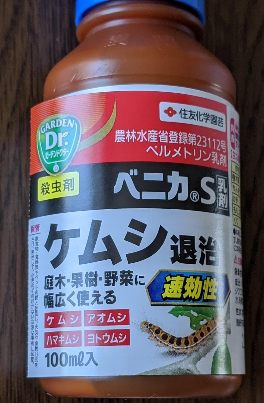 f:id:sakuramaru-japan:20200814122948j:image
