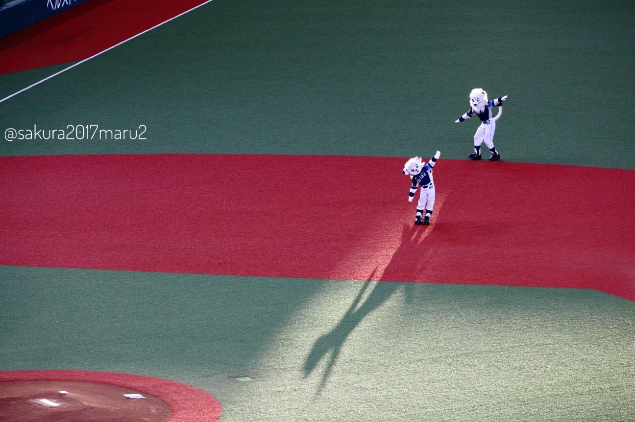 f:id:sakuramaru-japan:20200901005620j:image