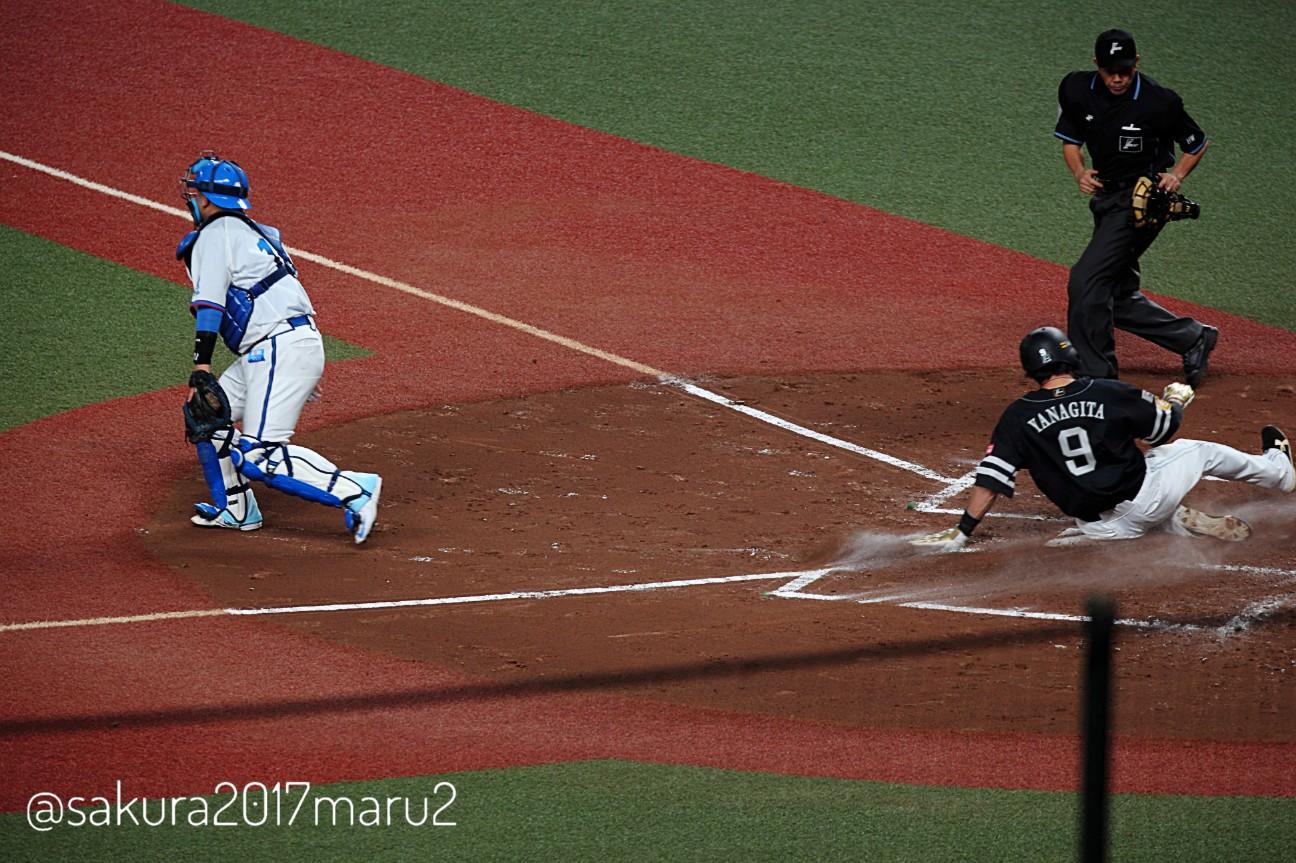 f:id:sakuramaru-japan:20201010130222j:image