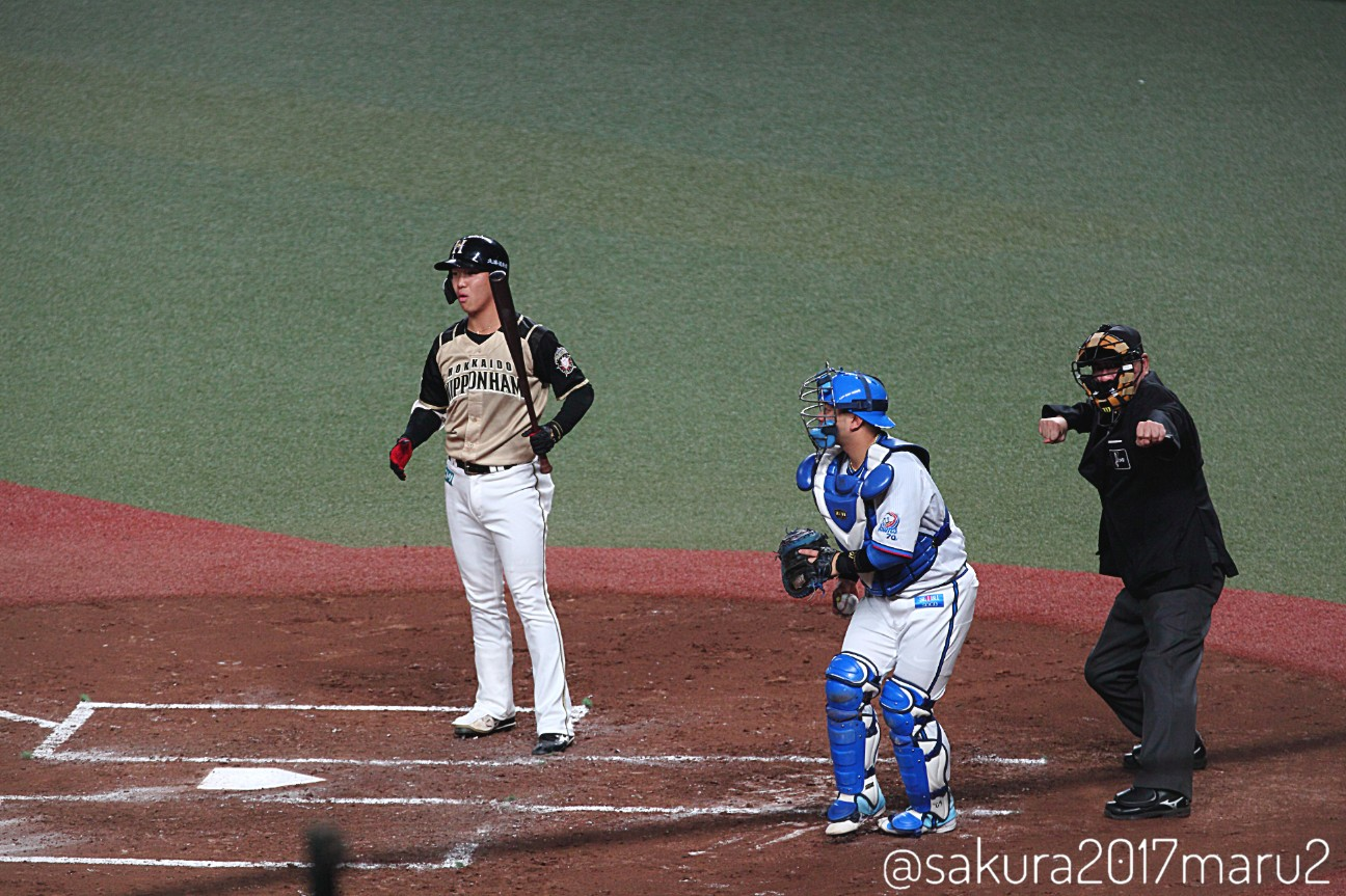 f:id:sakuramaru-japan:20201116224154j:image