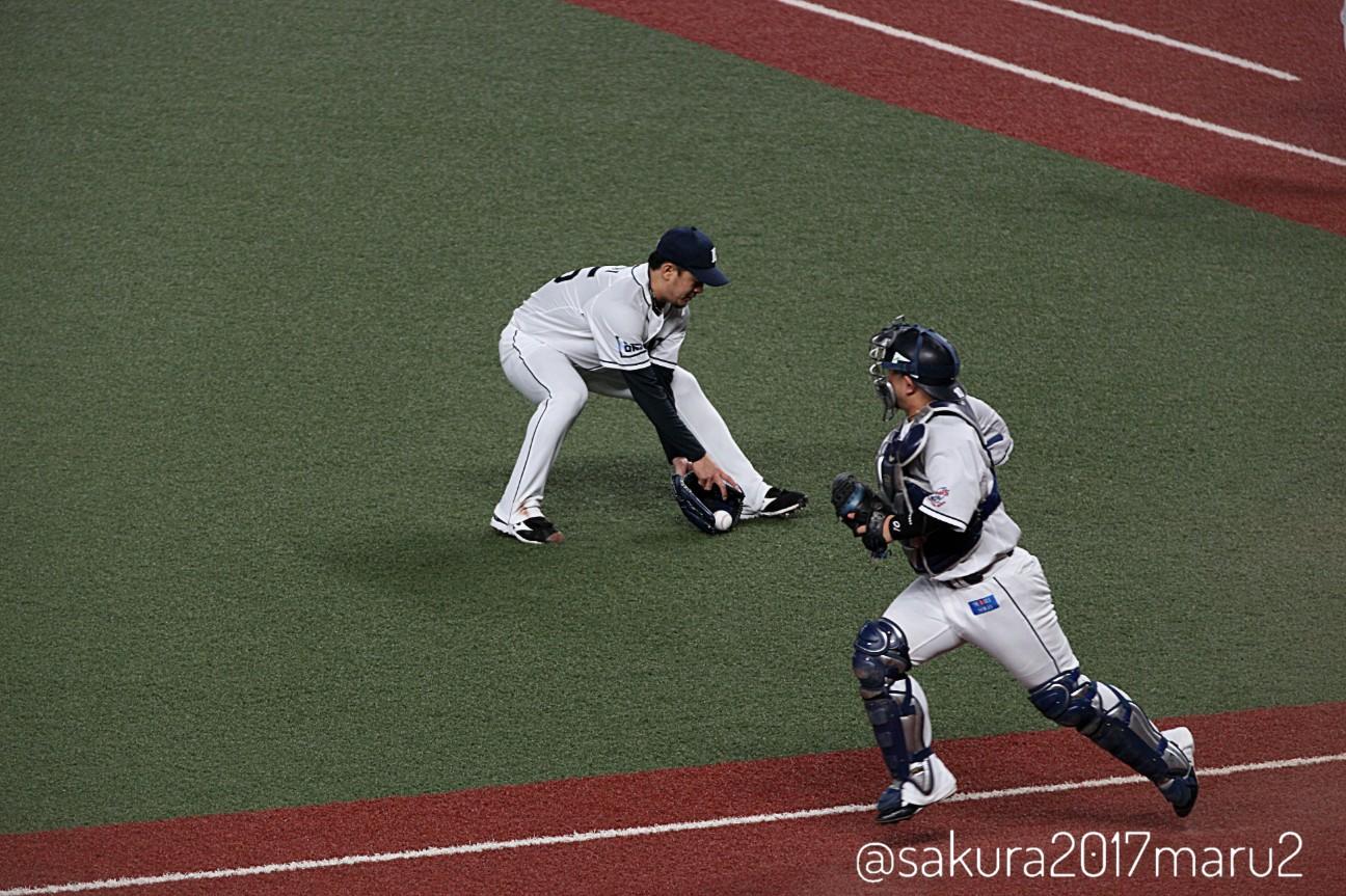 f:id:sakuramaru-japan:20201118003620j:image