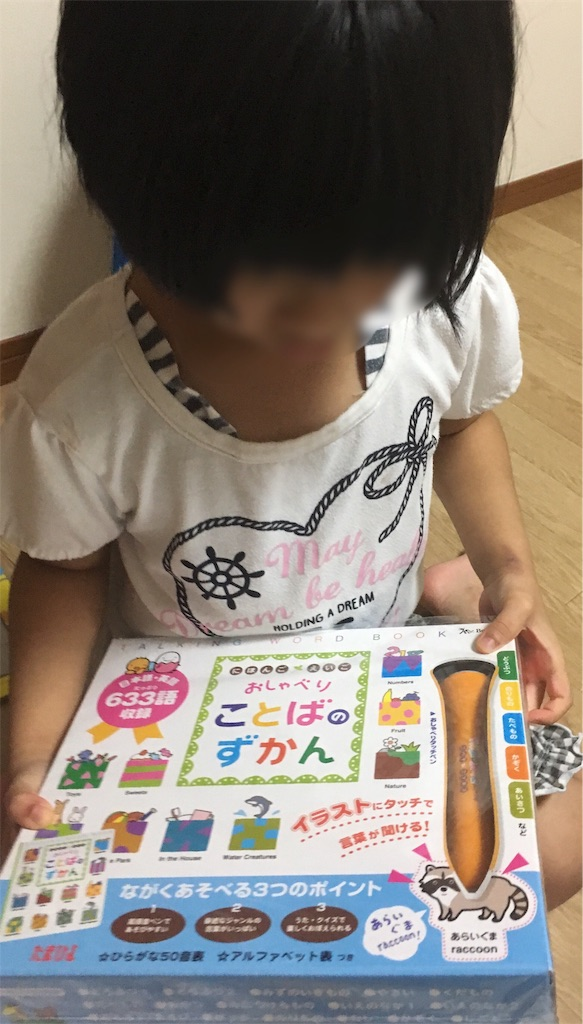 f:id:sakuramikoro:20181114142418j:image