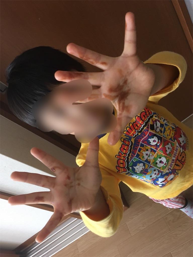 f:id:sakuramikoro:20181130203655j:image