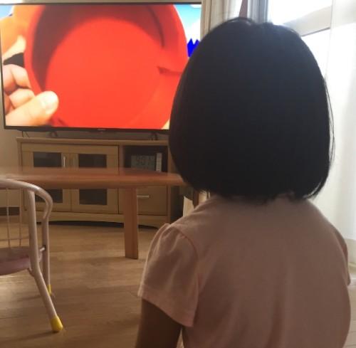 f:id:sakuramikoro:20190116135904j:plain