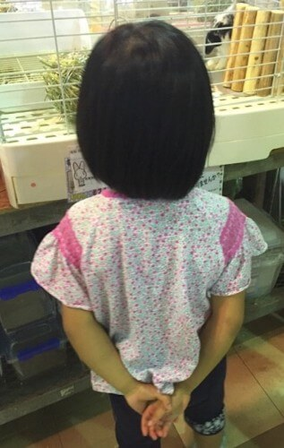 f:id:sakuramikoro:20190306154231j:plain