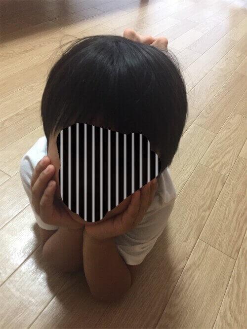 f:id:sakuramikoro:20190308215323j:plain