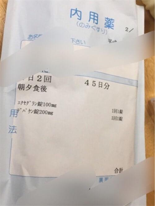 f:id:sakuramikoro:20190308223513j:plain