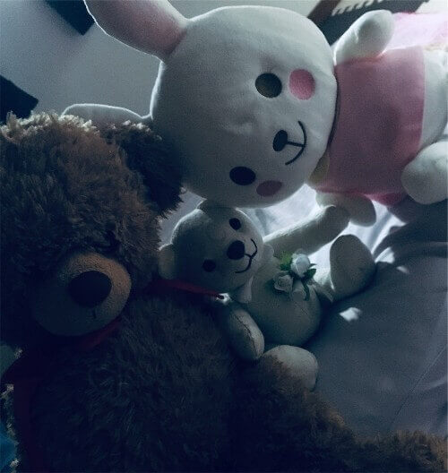 f:id:sakuramikoro:20190308230011j:plain