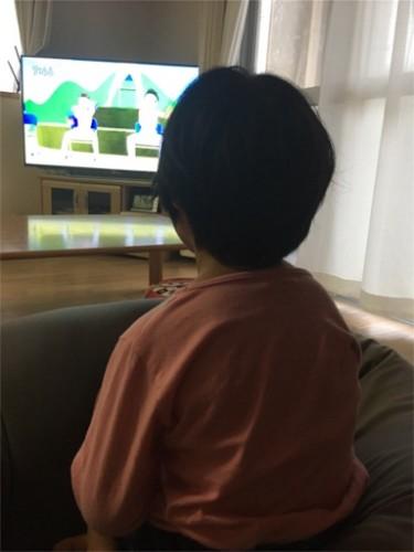 f:id:sakuramikoro:20190308234941j:plain
