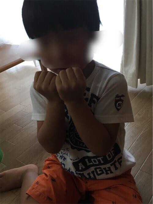 f:id:sakuramikoro:20190309225258j:plain