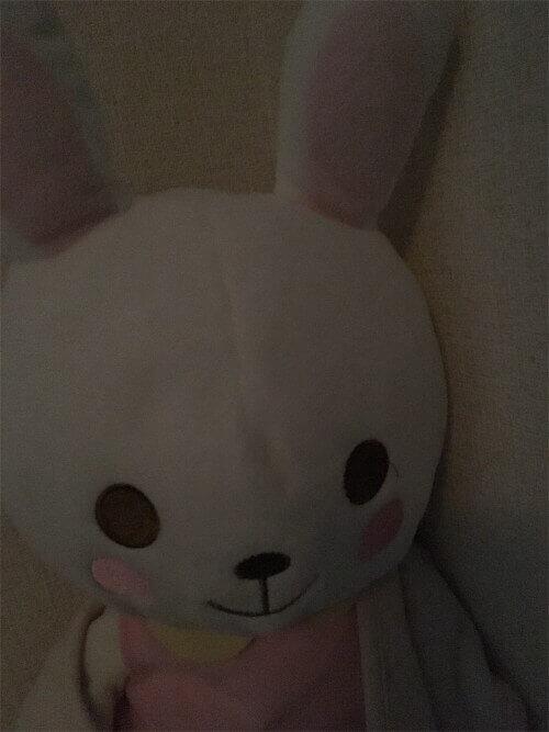 f:id:sakuramikoro:20190309231726j:plain