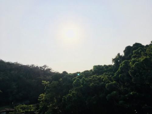 f:id:sakuramikoro:20190328155131j:plain