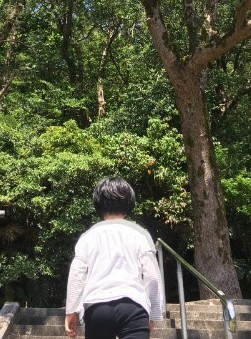 f:id:sakuramikoro:20190406210110j:plain