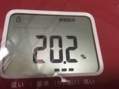 f:id:sakuramikoro:20190924173437j:plain