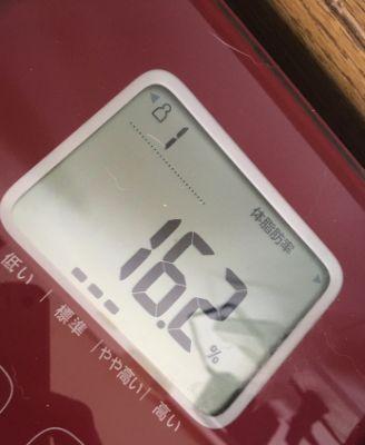 f:id:sakuramikoro:20200226191036j:plain