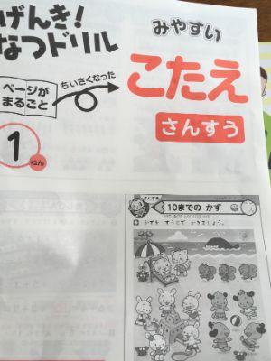 f:id:sakuramikoro:20200801220857j:plain