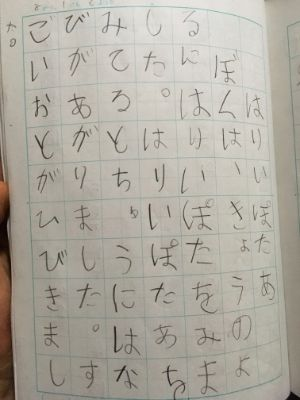 f:id:sakuramikoro:20200802214556j:plain