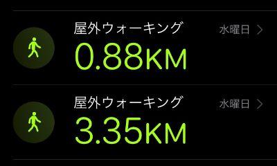 f:id:sakuramikoro:20201105165810j:plain