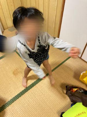 f:id:sakuramikoro:20201206224609j:plain
