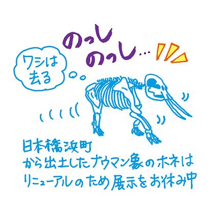 f:id:sakuramiyuki:20160419002113j:plain