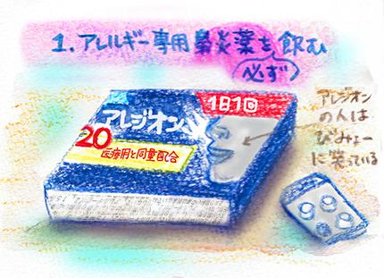 f:id:sakuramiyuki:20170324183833j:plain