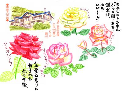 f:id:sakuramiyuki:20170409222233j:plain