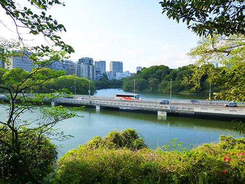 f:id:sakuramiyuki:20170502222544j:plain