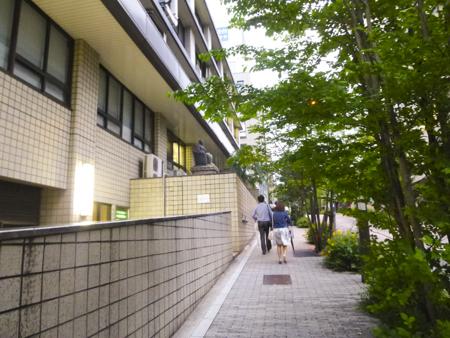f:id:sakuramiyuki:20170527004127j:plain