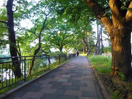 f:id:sakuramiyuki:20170609120636j:plain