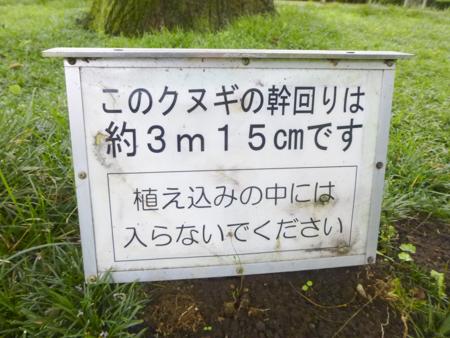 f:id:sakuramiyuki:20170630225813j:plain