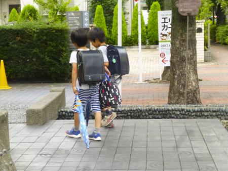 f:id:sakuramiyuki:20170701001952j:plain