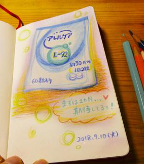 f:id:sakuramiyuki:20180720222049j:plain