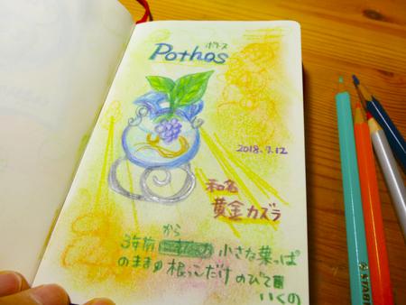 f:id:sakuramiyuki:20180720222510j:plain