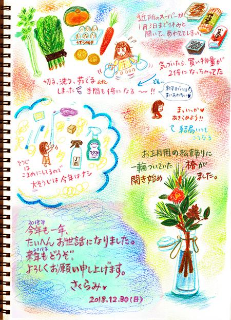 f:id:sakuramiyuki:20181231001305j:plain