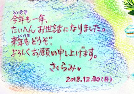f:id:sakuramiyuki:20181231002119j:plain