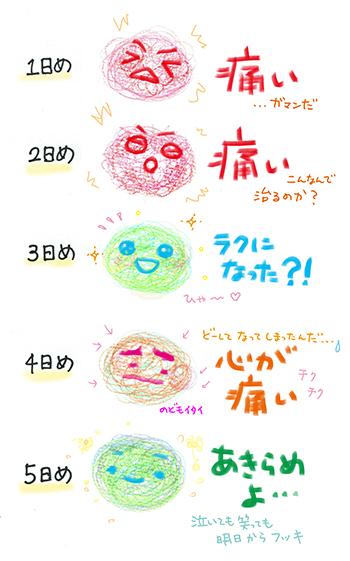 f:id:sakuramiyuki:20190118115716j:plain