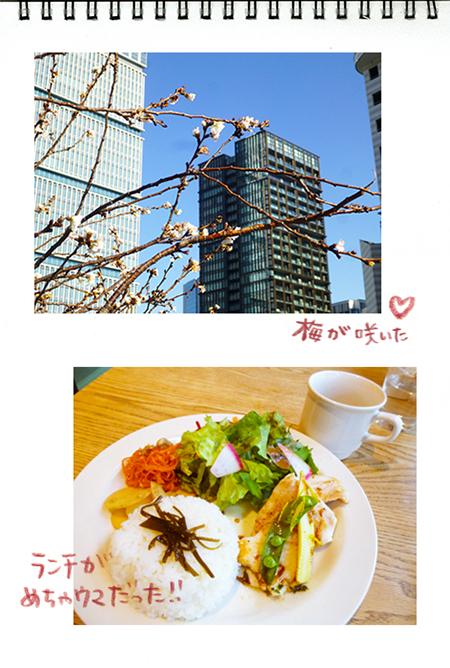 f:id:sakuramiyuki:20190208211335j:plain