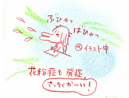 f:id:sakuramiyuki:20190208211656j:plain