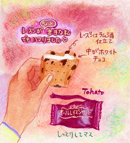 f:id:sakuramiyuki:20190213204603j:plain