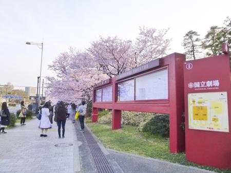 f:id:sakuramiyuki:20190329112613j:plain
