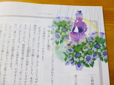 f:id:sakuramiyuki:20190719222242j:plain