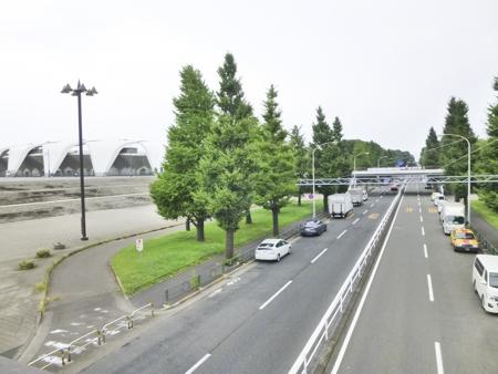 f:id:sakuramiyuki:20190816181516j:plain