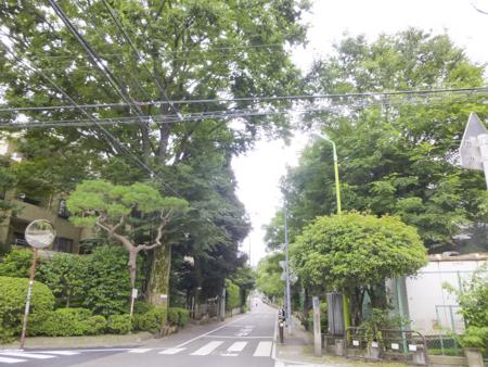 f:id:sakuramiyuki:20190906111515j:plain
